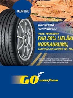 Goodyear Performance 2